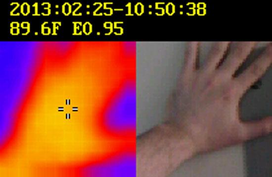 Dewalt 12V Thermal Imager Direct Output Image