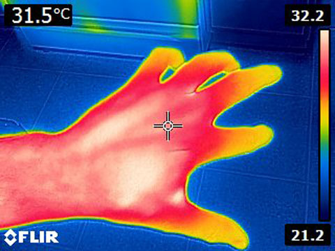 Flir E4 After Mod MSX Thermal Image of Hand