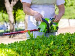 GreenWorks 40V Hedge Trimmer