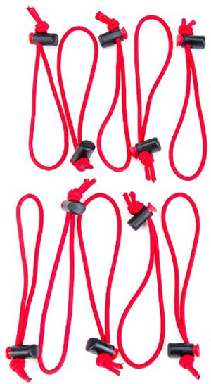 Think Tank Red Whips