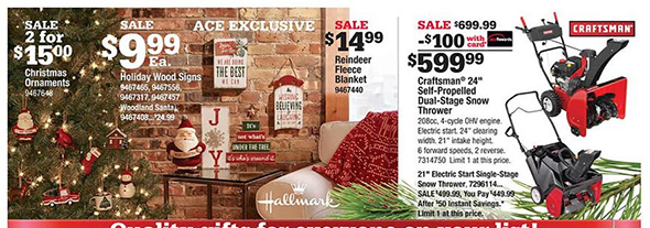 Ace Hardware Black Friday Ad Page 4
