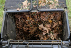 Ego 21 inch mower filling bag with leaves