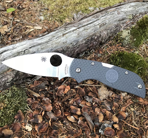 Spyderco Chaparral with FRN Handle